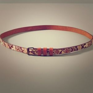 Anthropologie Steppe Belt